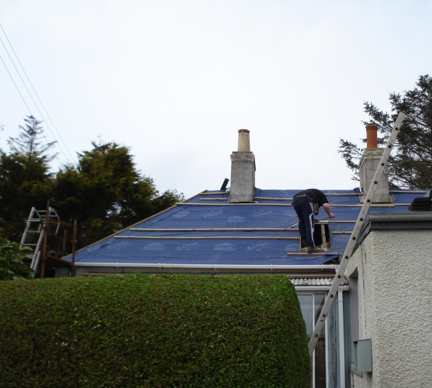 Cottage roof 7